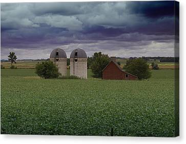 Surrounded By Fields Canvas Print by Rebecca Davis