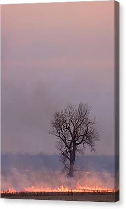 Canvas Print featuring the photograph Surrounded By Fire by Scott Bean