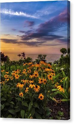 Susan's Sunset Canvas Print by Mark Papke