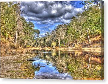 Suwannee River Scene Canvas Print by Donald Williams