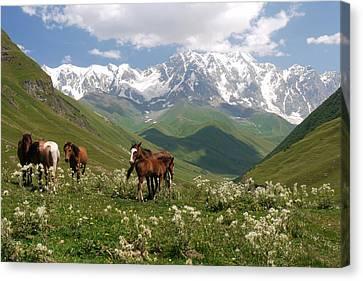 Svaneti  Canvas Print