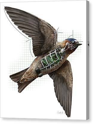 Swallow Drone Robotics Canvas Print by Nicolle R. Fuller