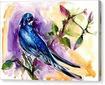 Swallow In Magnolia Watercolor Canvas Print by Tiberiu Soos