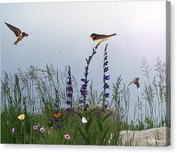Swallows And Butterflies Canvas Print
