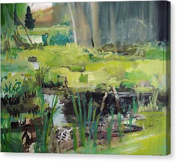 Swamp Canvas Print by Emily Gibson