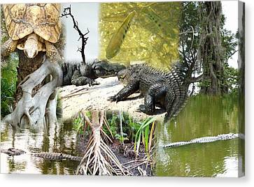 Swamp Life Canvas Print