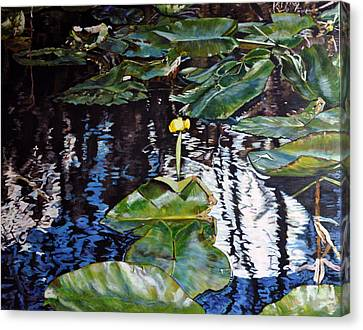Swamp Lilly Canvas Print