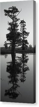 Canvas Print featuring the photograph Swamp Mirror by Silke Brubaker