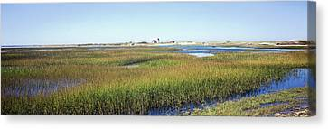 Swamp With Lighthouse Canvas Print by Panoramic Images