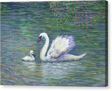 Swan And One Baby Canvas Print