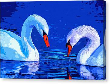 Bonding Canvas Print - Swan Bond by Brian Stevens