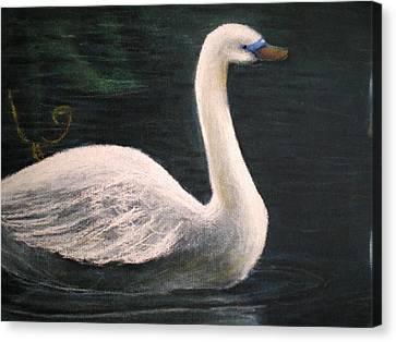 Swan I Canvas Print
