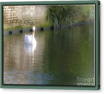 Canvas Print featuring the photograph Swan In The Canal by Victoria Harrington