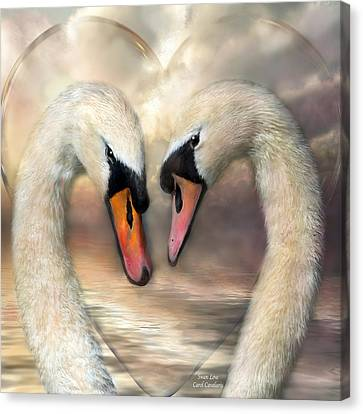 Swan Love Canvas Print by Carol Cavalaris