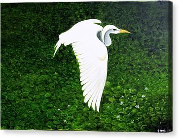 Swan-oil Painting Canvas Print by Rejeena Niaz