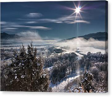 Swan Valley Winter Canvas Print by Leland D Howard