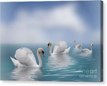 Swans In Paradise Canvas Print