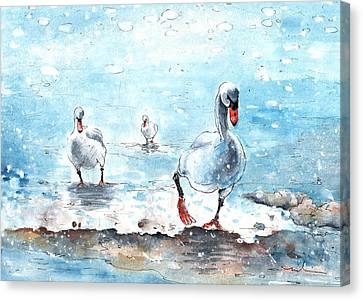 Swans On The March Canvas Print by Miki De Goodaboom