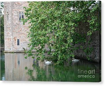 Canvas Print featuring the photograph Swans Under The Palace Walls by Linda Prewer