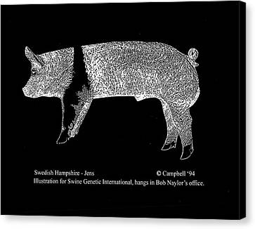 Canvas Print featuring the drawing Swedish Hampshire by Larry Campbell