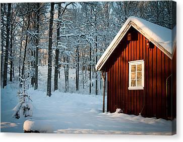 Swedish Winter Canvas Print by Robert Hellstrom