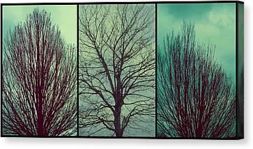 Sweep The Sky Canvas Print by Patricia Strand