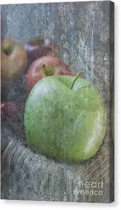 Sweet Apples Canvas Print by Arlene Carmel