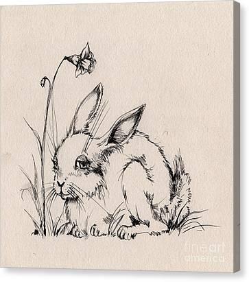 Sweet Bunny Canvas Print by Angel  Tarantella