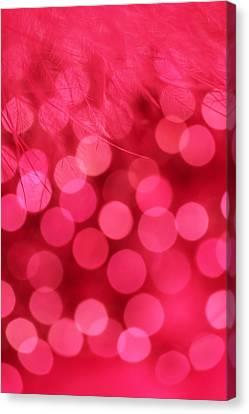 Canvas Print featuring the photograph Sweet Emotion by Dazzle Zazz
