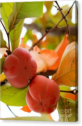 Canvas Print featuring the photograph Sweet Fruit by Erika Weber