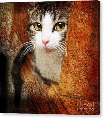Animal Canvas Print - Sweet Innocence by Andee Design