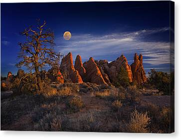 Canvas Print featuring the photograph Sweet Light by Wendell Thompson