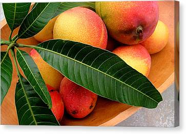 Mango Canvas Print - Sweet Molokai Mango by James Temple