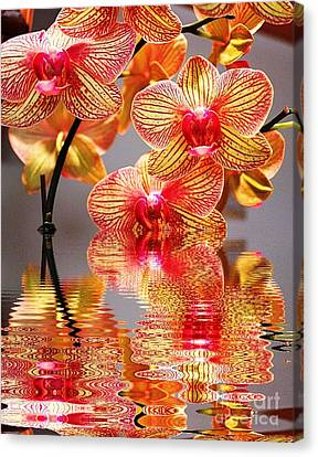 Sweet Orchid Reflection Canvas Print by Judy Palkimas