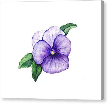 Canvas Print featuring the painting Sweet Pansy by Heidi Kriel