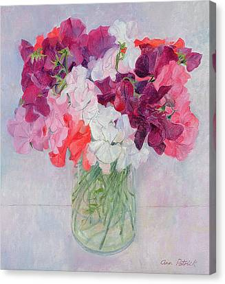 Sweet Peas Canvas Print by Ann Patrick