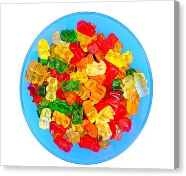 Sweet Treat Gummy Bears Canvas Print by Andrea Rea