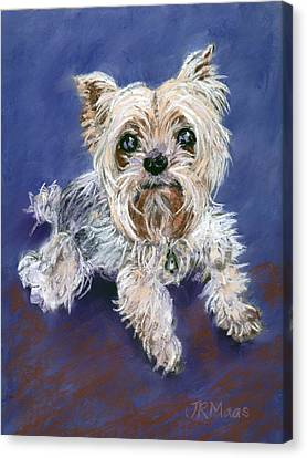 Canvas Print featuring the pastel Sweet Yorkie by Julie Maas