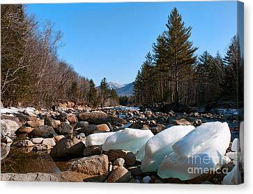 Swift River Ice Blocks Canvas Print by Sharon Seaward