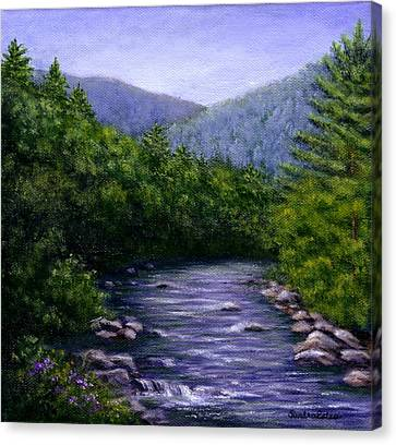 Swift River Canvas Print