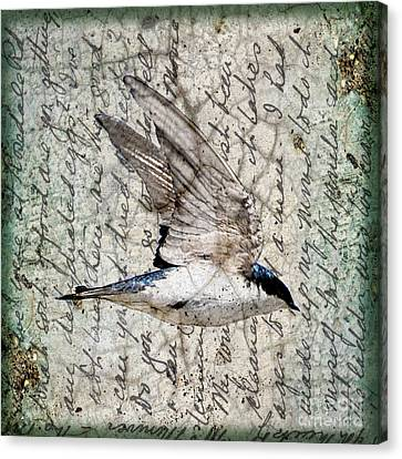 Swift Wings Canvas Print by Judy Wood