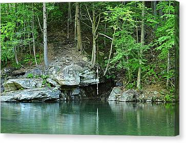 Swimming Hole At Rock Run Canvas Print