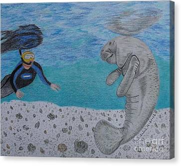 Swimming With The Manatee Canvas Print