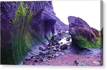 Canvas Print featuring the photograph Swirl Rocks by John Williams