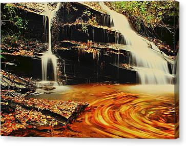 Swirling Leaves Canvas Print by Rodney Lee Williams