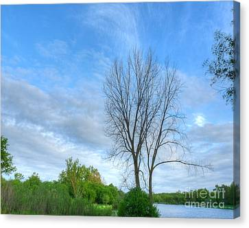 Swirly Sky And Tree Canvas Print
