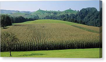 Switzerland, Canton Zug, Panoramic View Canvas Print by Panoramic Images