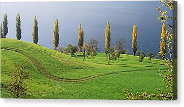 Switzerland, Lake Zug, View Of A Row Canvas Print by Panoramic Images