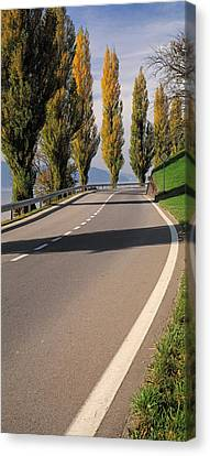 Switzerland, Lake Zug, View Of Populus Canvas Print by Panoramic Images