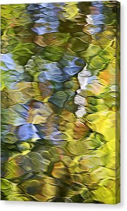 Sycamore Mosaic Canvas Print by Christina Rollo
